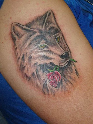 wolf-with-rose-tattoo.jpg